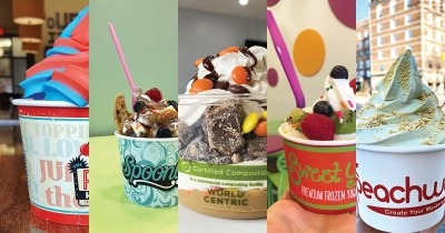 The Pump House, Spoonlickers, Bloop Frozen Yogurt, Sweet Yo's, Peachwave.